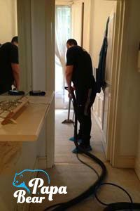 papa bear clapham cleaner carpet cleaning service